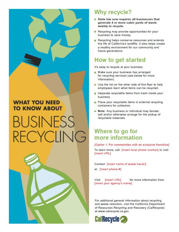 Business Flyer - English