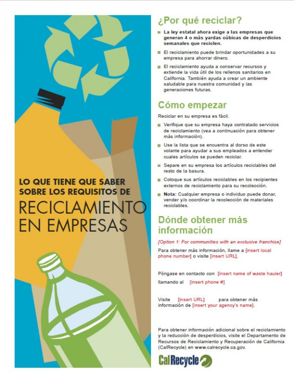 Business Flyer - Spanish